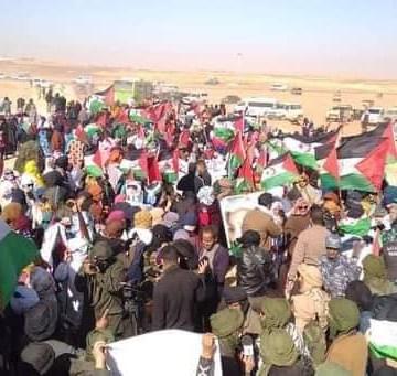 Los saharauis de los campamentos salen a las calles para festejar el fracaso de los planes marroquíes ante su resistencia