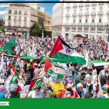 """La histórica #MarchaSaharaui por la libertad del pueblo saharaui demuestra """"el hartazgo"""" ante la injusticia en el Sahara Occidental – Frente Polisario"""