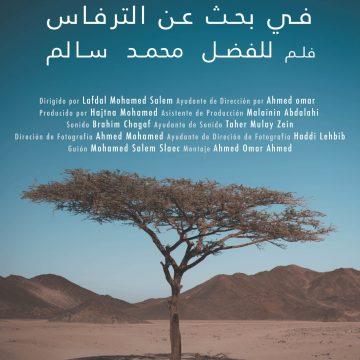 SAHARA OCCIDENTAL / WESTERN SAHARA – En busca de Tirfas – Searching for Tirfas | Lafdal Mohamed Salem