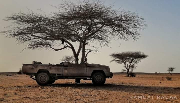 Ofensiva saharaui en el Sáhara Occidental deja al menos 7 marroquíes muertos y 4 combatientes saharauis