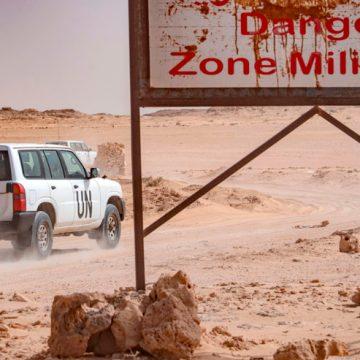 Agenda Exterior: Sáhara Occidental   Política Exterior