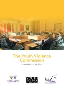 Youth Violence Comission - Interim Report July 2018