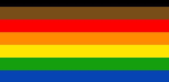 LGBTQIA+ PRIDE FLAG WITH BLACK AND BROWN