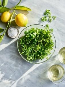 Herb_Salad_25744