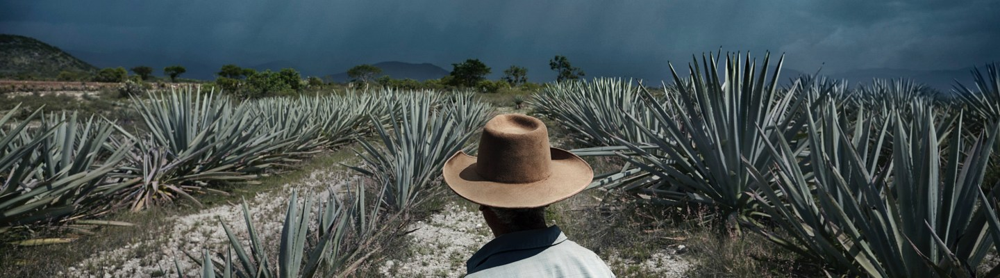Chris Crisman Mezcal