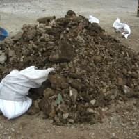 Stone Mountains, Oyster Shells, and Buried Treasure: Volunteering in Ishinomaki