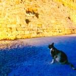 rhodes island greece