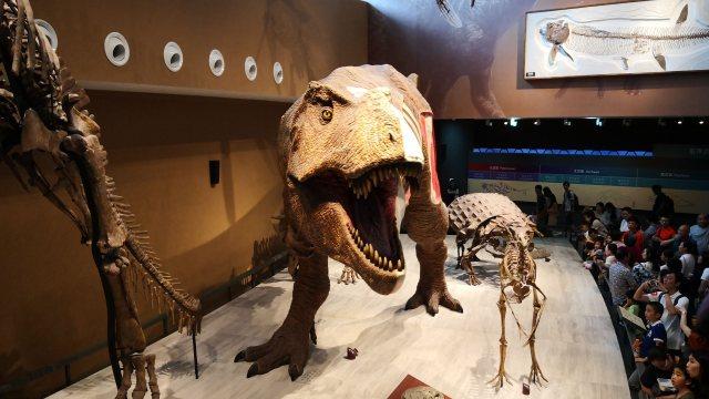 Shanghai Natural History Myuseum