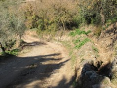 dry-track-dry-drainage-ditch