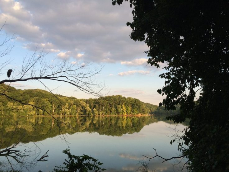 Radnor Lake, a pleasant retreat for kids and adults