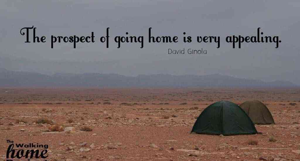 Quotes: David Ginola - The prospect of going home is very appealing