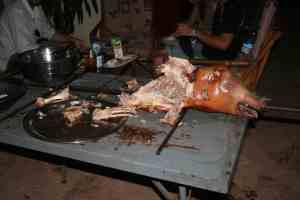 After spit roasting a pig at the Sleeping Camel hostel Bamako, Mali (2011-11)