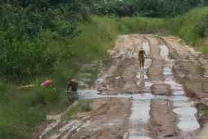 Muddy road, DR Congo (2012-02)