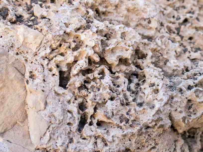 Porous rock at Ein Gedi Nature Reserve,, Israel (2017-01-04)