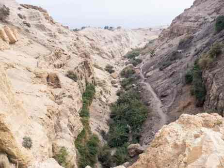 View into David Valley, Ein Gedi Nature Reserve, Israel (2017-01-04)