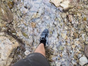 Carola's shoes in the water in Arugot Valley Ein Gedi Nature Reserve, Israel (2017-01-04)
