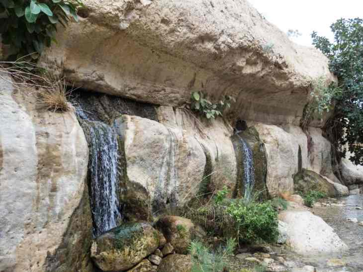 Water from the rock in Arugot Valley Ein Gedi Nature Reserve, Israel (2017-01-04)