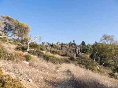 Climbing Mount Carmel to Stella Maris, Haifa, Israel (2016-12)