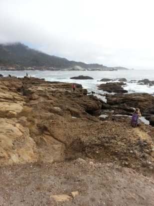 Hike along beach at Point Lobos