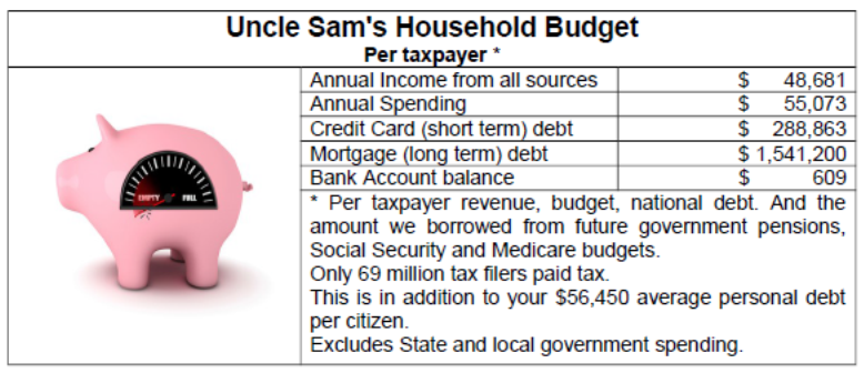 Uncle Sam's Household budget