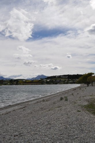 Lake Wanaka shore