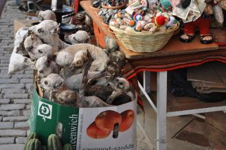 Witches market, dead baby alpacas and other weird stuff for offering to the gods