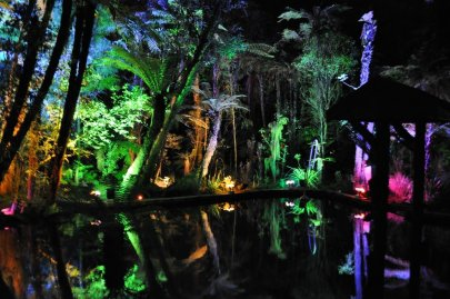 Rainbow Springs at night
