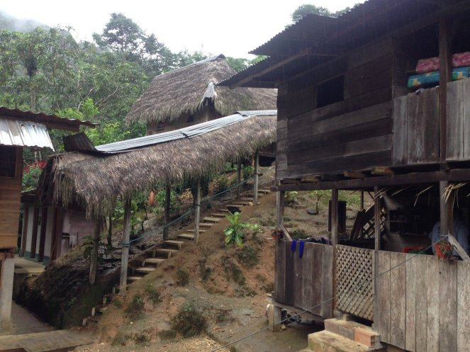 Jungle Home Stay