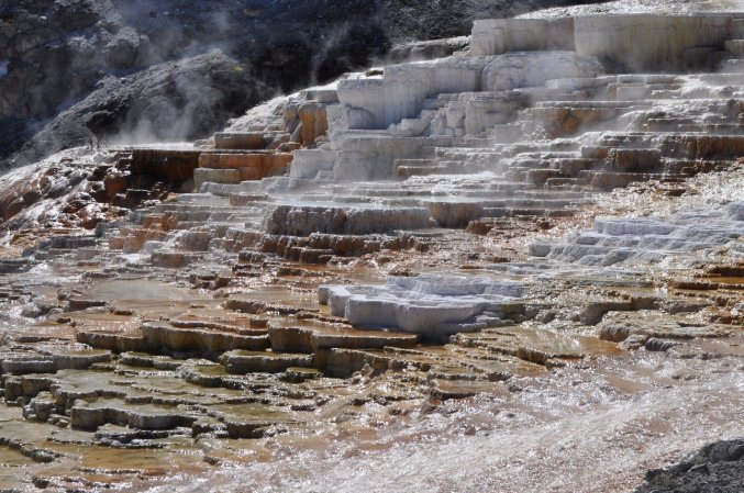 Mammoth_Hot_Springs_1