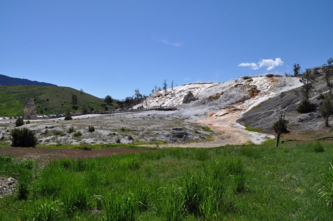 Mammoth_Hot_Springs_4
