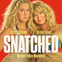 Snatched poster