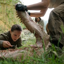 Annihilation still (Paramount Pictures)
