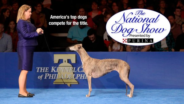 The National Dog Show Presented by Purina - 2015