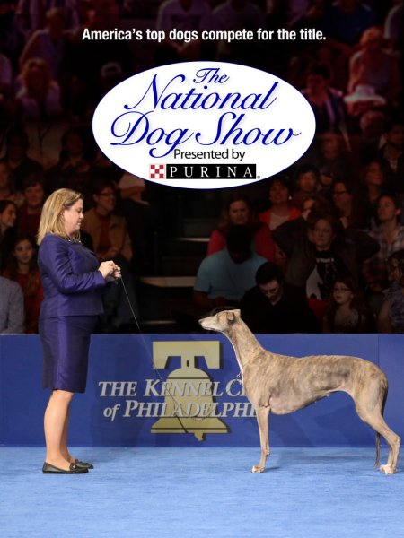 The National Dog Show Presented by Purina - 2017