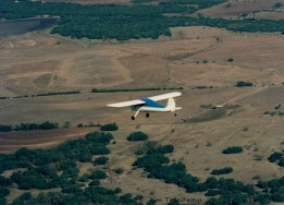 Cessna 140 Flying