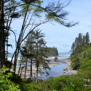 Ruby and Rialto Beach: Olympic National Park