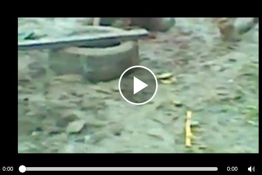 Video of Nigerians
