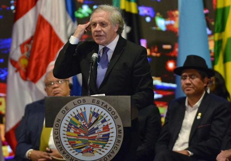 Luis Almagro, secretario general de la OEA. (AP Photo/Luis Benavides)