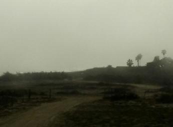 niebla-sanpedrito-bcs-004