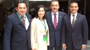 Diputados-Federales-Quintana-roo-1