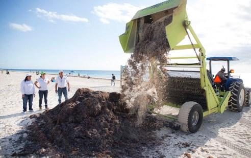 002 limpieza playas Puerto Morelos