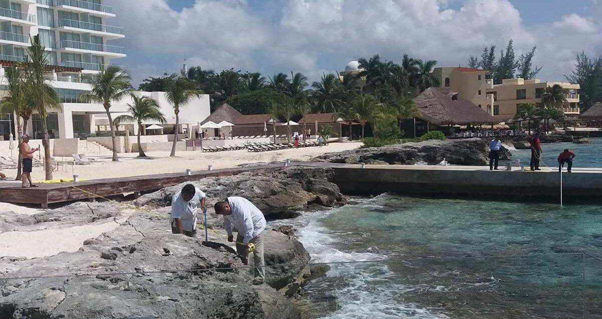 Cocodrilo ataca a empleado hotelero en Cozumel