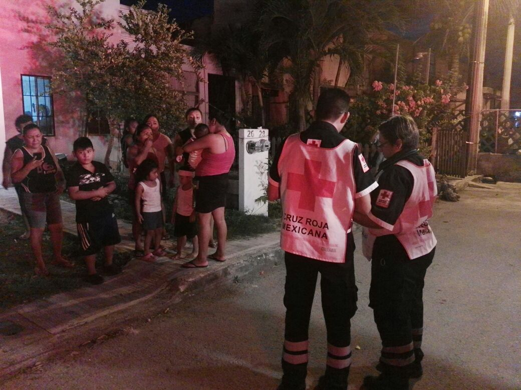 Cae barda sobre dos menores en la Región 107 de Cancún