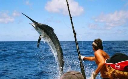 Los pescadores participantes gastan entre 5 y 6 mil dólares durante su estancia .