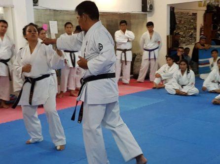N11 Karate1 (5)