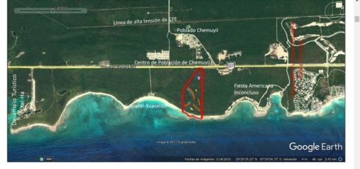 """Proyecto """"La Calma Eco Resort Luxury"""", promovido por la empresa Palmares del Country, S.A. de C.V."""