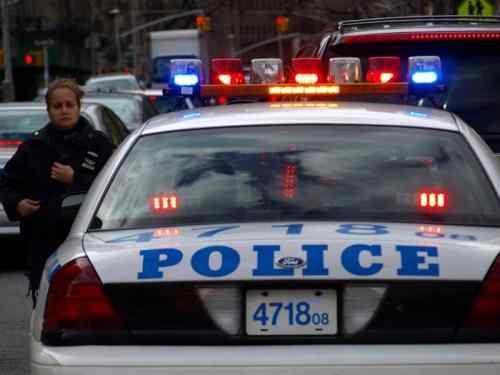 Ocho apresados por armas y drogas en Queens