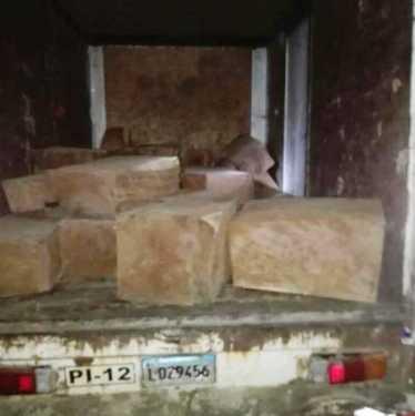 Envían a prisión preventiva a traficante de madera en Santiago