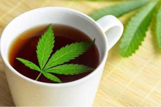 Criollos Alto Manhattan visitarán cafetería Queens vende té Marihuana