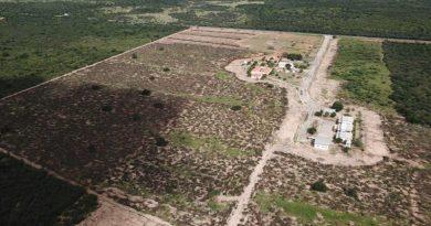 Fazenda Escola Modelo de Barra usará expertise da Univasf e Embrapa em projetos de fruticultura